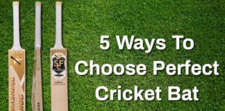 Perfect Cricket Bat