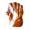 cricket-gloves-br.jpg