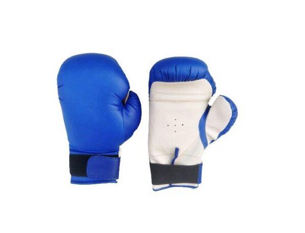 Boxing Gloves 10oz